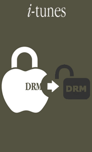 remove drm from itunes videos